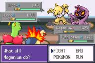 Pokemon-Battle